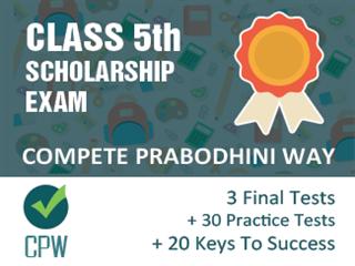 Class 5th Scholarship Exam Online Test Series