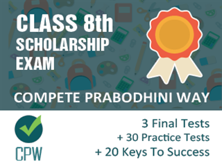 Class 8th Scholarship Exam Online Test Series